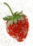 Erdbeere im Wasser Lizenzfreie Stockfotografie
