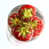 Erdbeere im Wasser Stockbild