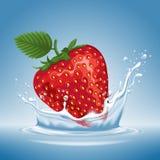 Erdbeere im Wasserspritzen Lizenzfreie Stockfotos