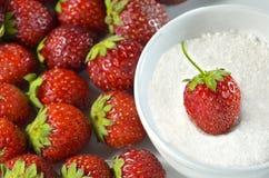 Erdbeere im Zucker Lizenzfreie Stockfotos