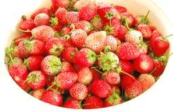 Erdbeere, Japan Lizenzfreie Stockfotos
