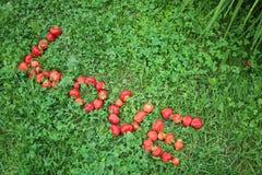 Erdbeere-` LIEBE ` Wort auf dem Gras diagonal Lizenzfreies Stockfoto