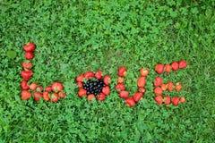 Erdbeere-` LIEBE ` Wort zentrierte mit schwarzen Johannisbeeren Stockfoto