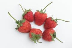 Erdbeere lokalisierter Hintergrund Lizenzfreie Stockfotos