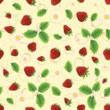 Erdbeere mit Blättern und Blumen Stockfoto
