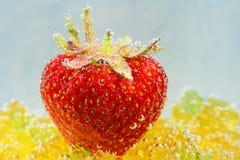 Erdbeere mit Blasen auf einem blauen Hintergrund Lizenzfreies Stockfoto
