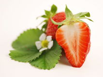 Erdbeere mit Blume Stockfotos