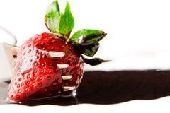 Erdbeere mit flüssiger Schokolade Stockfotos