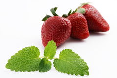 Erdbeere mit Melisse Lizenzfreie Stockfotografie