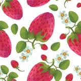 Erdbeere mit nahtlosem Vektormuster der Blätter Lizenzfreie Stockfotografie