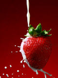 Erdbeere mit Sahne Lizenzfreies Stockfoto
