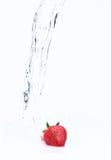 Erdbeere mit Wasser lizenzfreies stockfoto