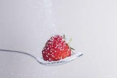Erdbeere mit Zucker lizenzfreie stockbilder