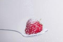 Erdbeere mit Zucker stockbilder