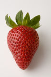 Erdbeere-nahes hohes Lizenzfreie Stockbilder