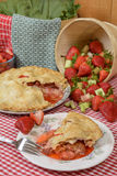 Erdbeere-Rhabarber-Tortenscheibe lizenzfreies stockbild