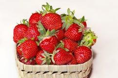 Erdbeere, rote Beere reif, wohlriechend, süß, geschmackvoll lizenzfreie stockfotos