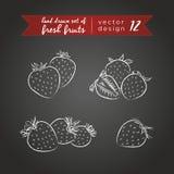 Erdbeere Stellen Sie von den frischen Früchten ein, ganz, halb und mit Blatt gebissen Auch im corel abgehobenen Betrag Lokalisier stock abbildung