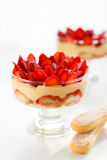 Erdbeere tiramisu Lizenzfreie Stockbilder