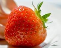 Erdbeere u. Meringe Lizenzfreie Stockfotografie