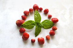 Erdbeere und Basilikum Lizenzfreies Stockfoto