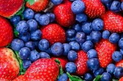 Erdbeere und Blaubeere Stockfoto