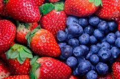 Erdbeere und Blaubeere Lizenzfreie Stockbilder