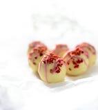 Erdbeere und Champagne Truffles lizenzfreies stockbild
