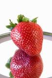 Erdbeere und eine Reflexion 0351 Lizenzfreies Stockfoto