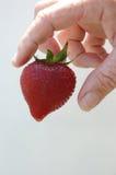 Erdbeere und Hand Lizenzfreie Stockfotos