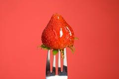 Erdbeere und Honig lizenzfreie stockfotografie