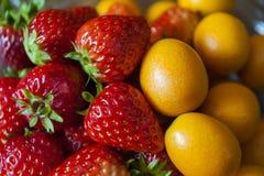 Erdbeere und japanische Orange Stockbilder