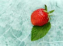 Erdbeere und Minze Lizenzfreie Stockfotos