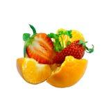 Erdbeere und Orange lizenzfreie stockbilder