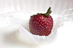 Erdbeere und Sahne Stockfotos