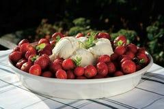 Erdbeere- und Vanilleeiscreme Lizenzfreie Stockbilder