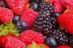 Erdbeere unter Mischbeeren Stockfoto