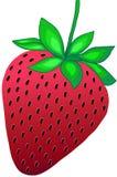 Erdbeere-vektorabbildung vektor abbildung