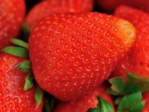 Erdbeere in XXL Stockbild