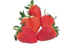 Erdbeerebeeren Lizenzfreie Stockfotografie