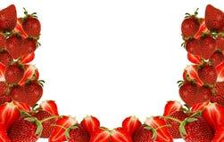 Erdbeerefeld Lizenzfreie Stockfotografie