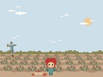 Erdbeerefeld Lizenzfreies Stockbild