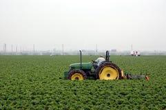 Erdbeerefeld und -traktor Lizenzfreies Stockfoto