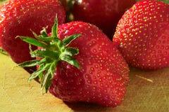 Erdbeerefieber Stockfotos