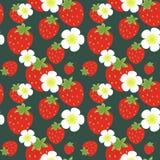 Erdbeeremuster Stockfotografie