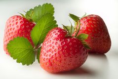 Erdbeeren Lizenzfreies Stockbild