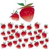 Erdbeeren lizenzfreie abbildung