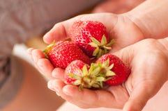 Erdbeeren Lizenzfreie Stockfotos