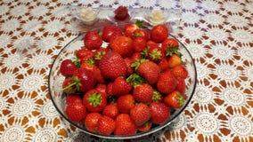 Erdbeeren Fotografia Stock