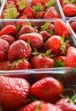 Erdbeeren auf einem Erzeugnis-Stand lizenzfreie stockfotografie